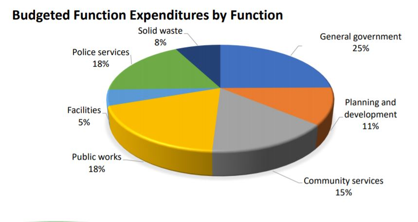 expenses by function pie