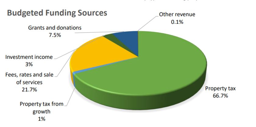 revenue source pie